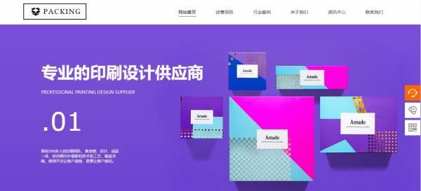 [遂宁网站建设],企业网站建设造型艺术 建站技术