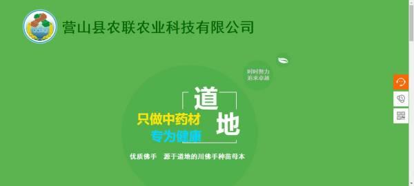 [遂宁做网站],企业网站建设提升保障网站运行环境的安全性